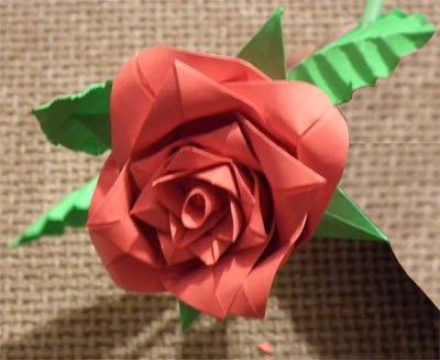 Схема этой розы очень